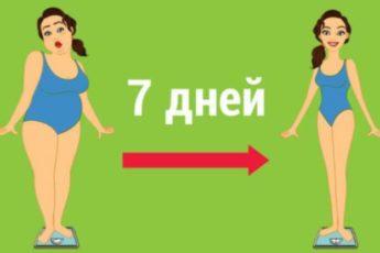 Нашумевшая по всей Москве диета Риммы Мойсенко.
