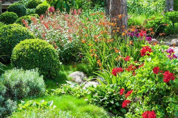 beautiful-flower-garden