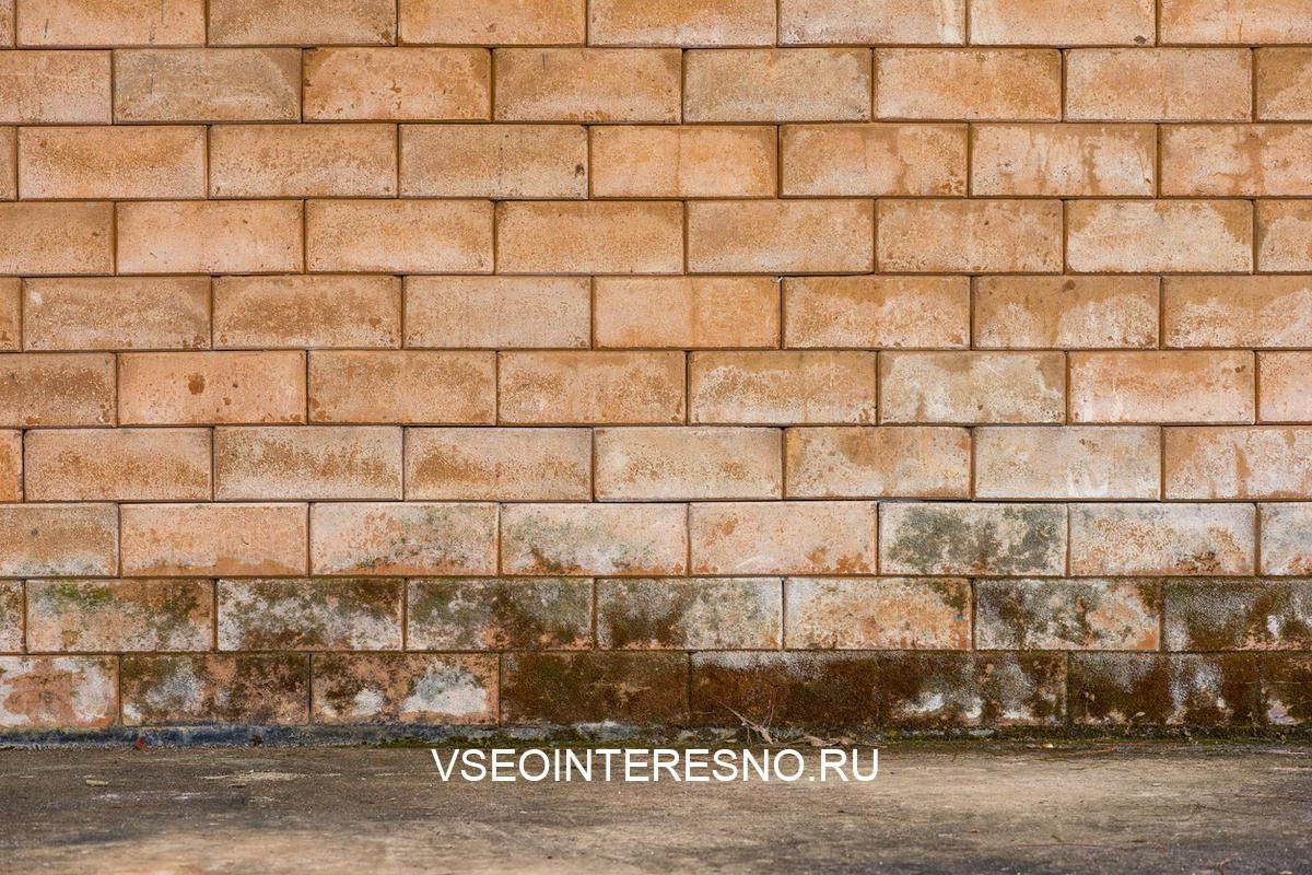texture-mildewed-walls