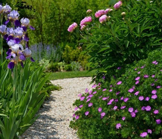 garden-03-640x547-1-4386208