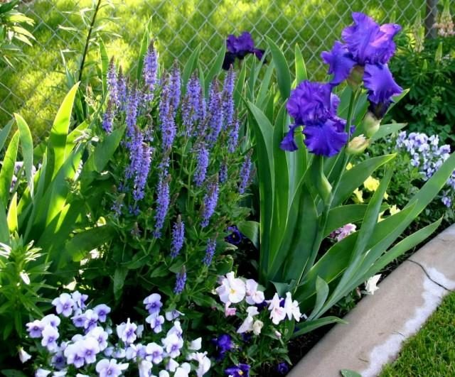 garden-05-640x531-1-2280287