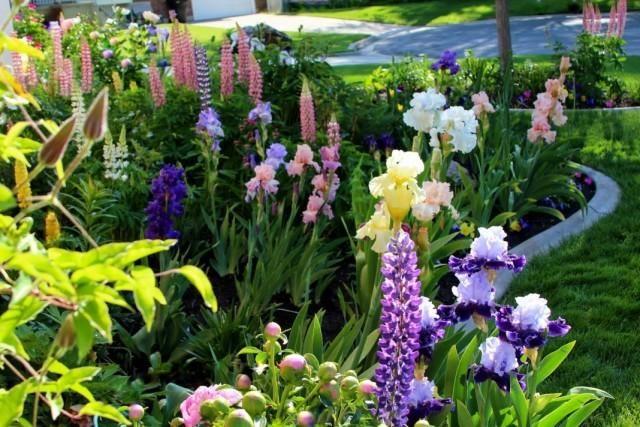 garden-06-640x427-1-6825897
