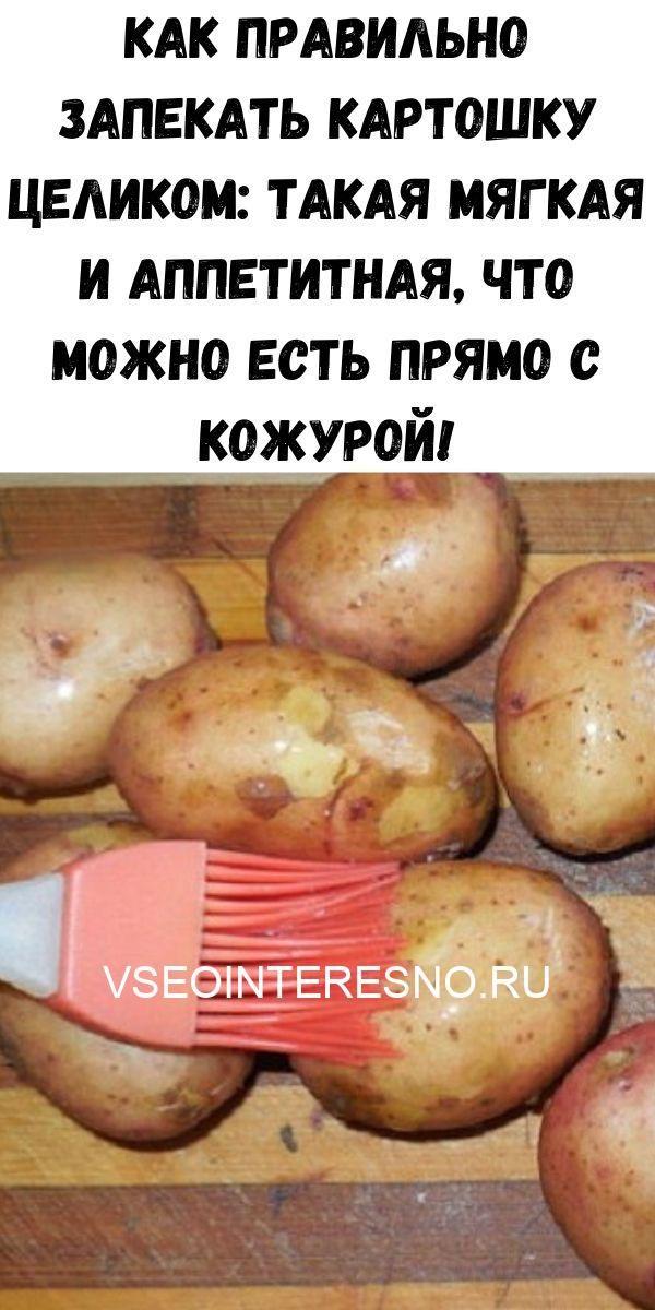 kurinyy-bulon-2020-06-16t215746-570-7818725