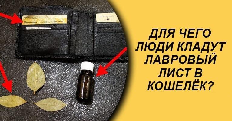 lavrovyy-list-v-koshelke-samyy-moschnyy-denezhnyy-magnit-3472626