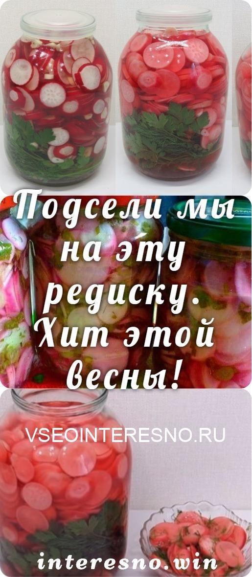 podseli-my-na-etu-redisku-hit-etoj-vesny-8747246