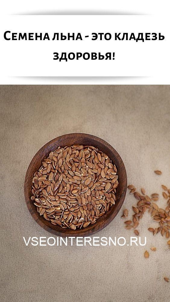 semena-lna-eto-kladez-zdorovya-6796955