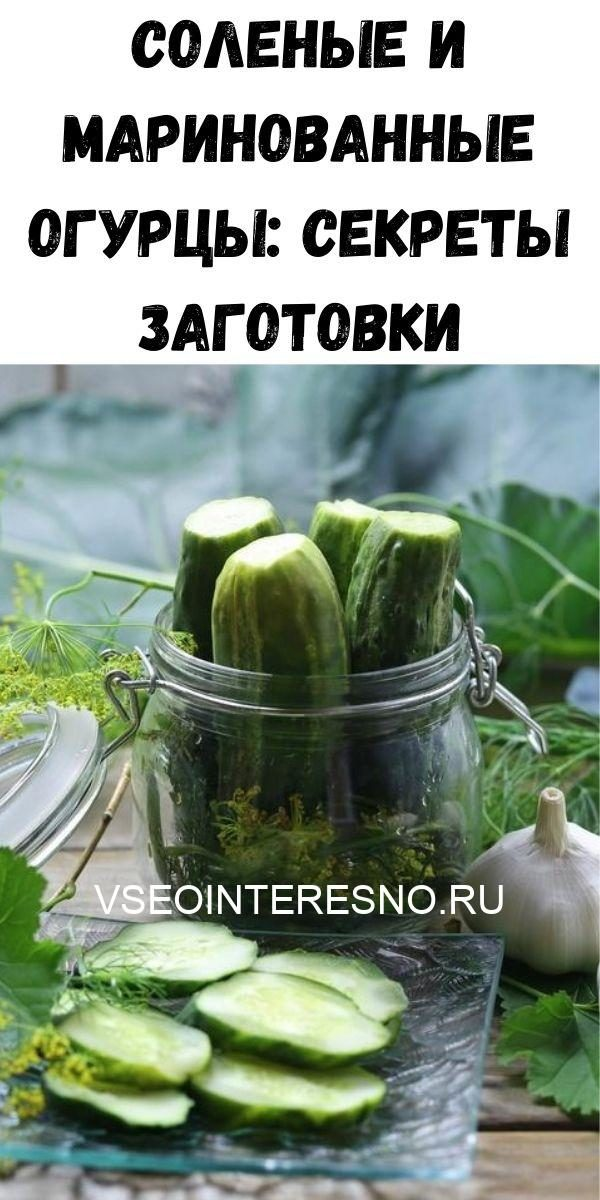 uprazhneniya-dlya-ukrepleniya-poyasnitsy-i-zdorovya-pochek_-vsego-5-minut-v-den-zdorovym-byt-legko-2020-06-06t221226-343-6555275