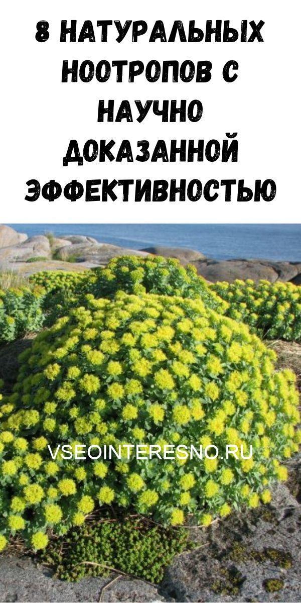 zhurnal-dlya-zhenschin-13-3-4879135